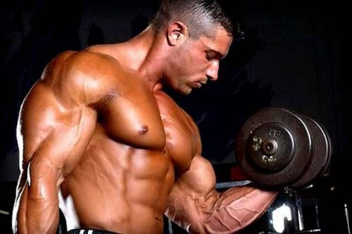 Advanced Ectomorph Bodybuilding