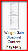 Weight gain blueprint
